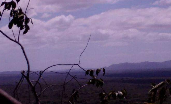 vista do topo da serra do pico em nazare do pico floresta pernambuco
