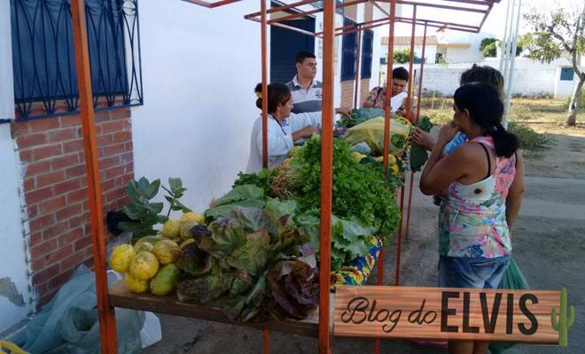 feira alimentos organicos sem agrotoxicos em floresta pernambuco 4