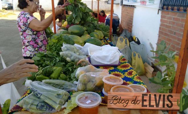 feira alimentos organicos sem agrotoxicos em floresta pernambuco