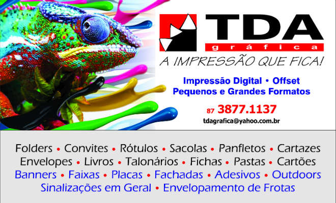 TDA grafica Blog Elvis