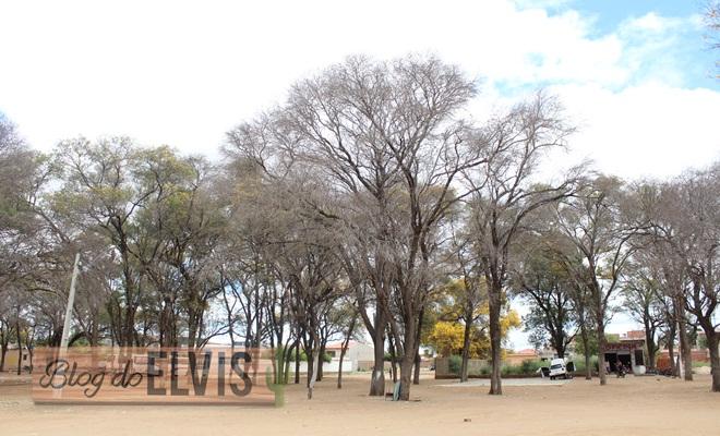 parque das caraibeiras em floresta no sertao de pernambuco (7)