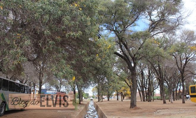 parque das caraibeiras em floresta no sertao de pernambuco (8)