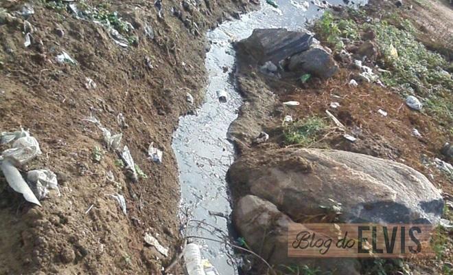 lixo dner floresta-pe (4)